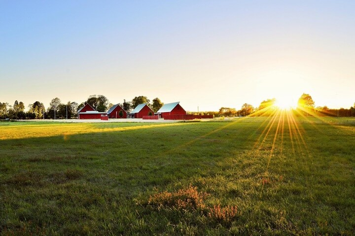 Homestead Red Outbuildings Sunrise