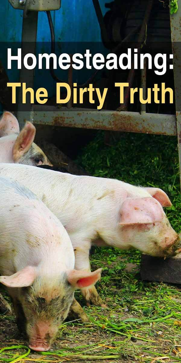 Homesteading: The Dirty Truth