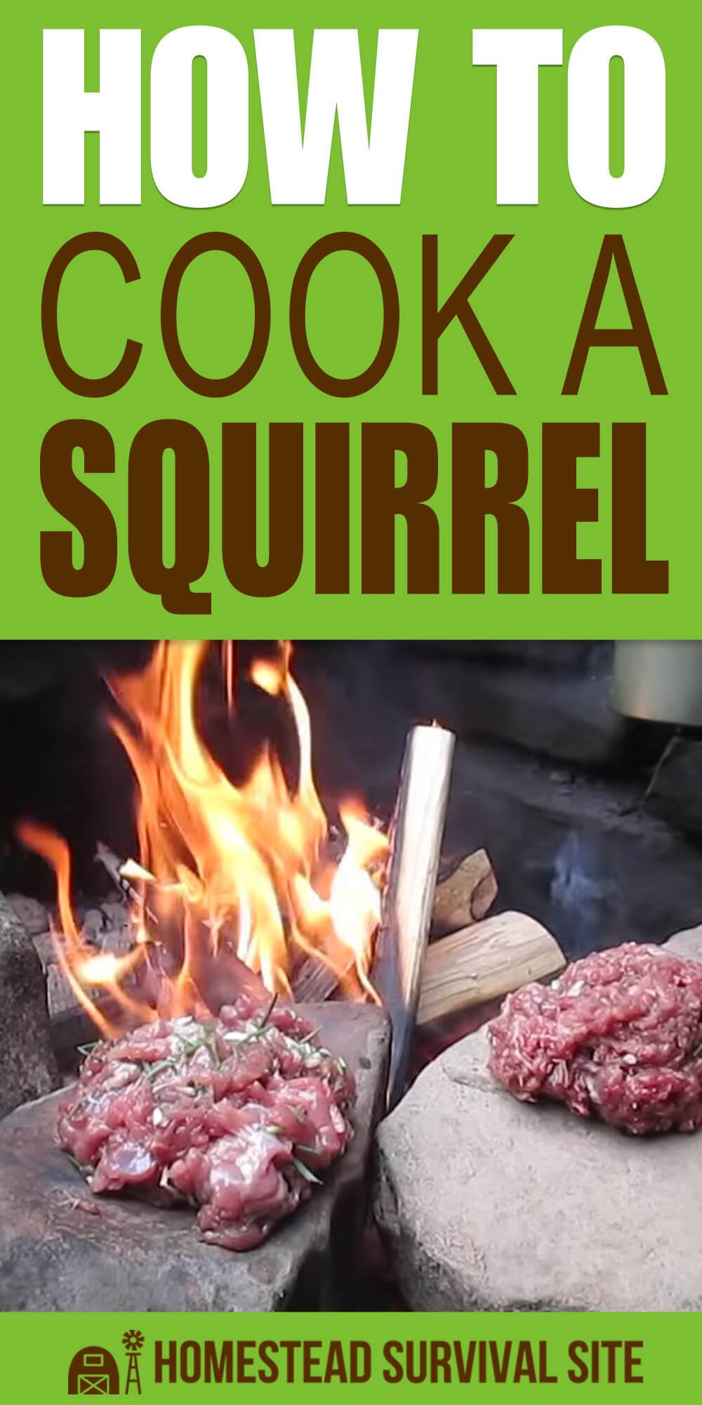 How To Cook A Squirrel