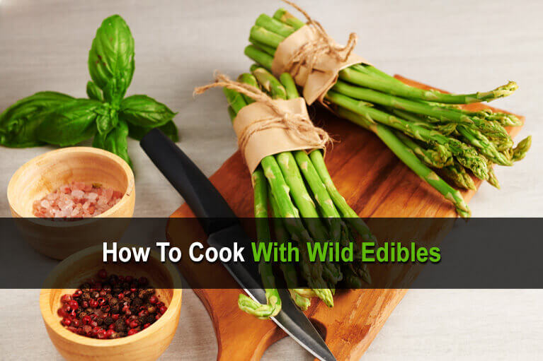 How to Cook with Wild Edibles