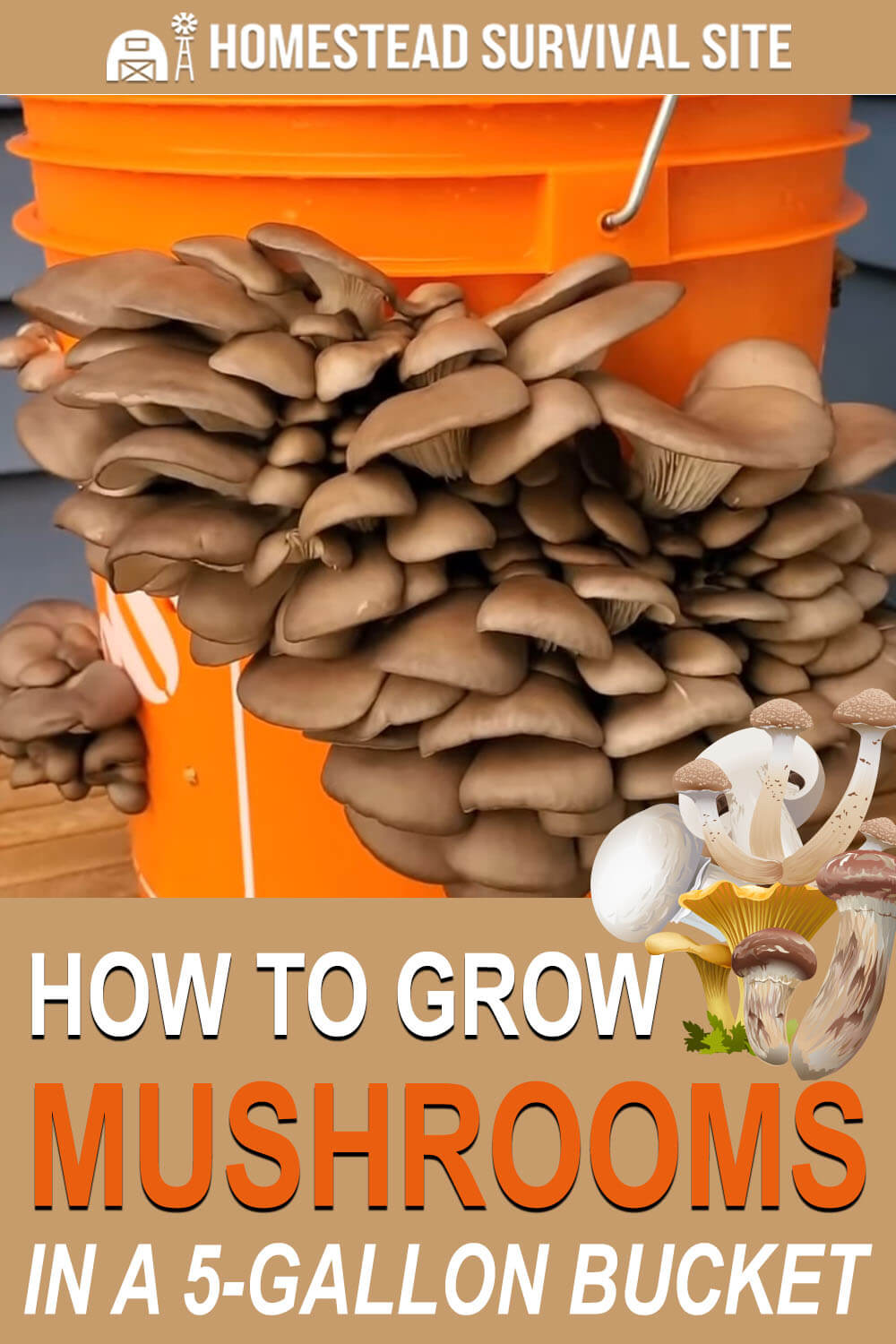How to Grow Mushrooms in a 5-Gallon Bucket