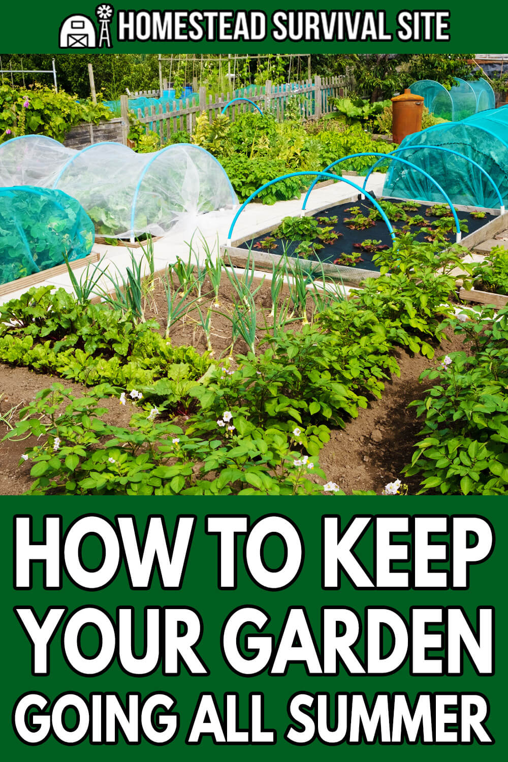How To Keep Your Garden Going All Summer
