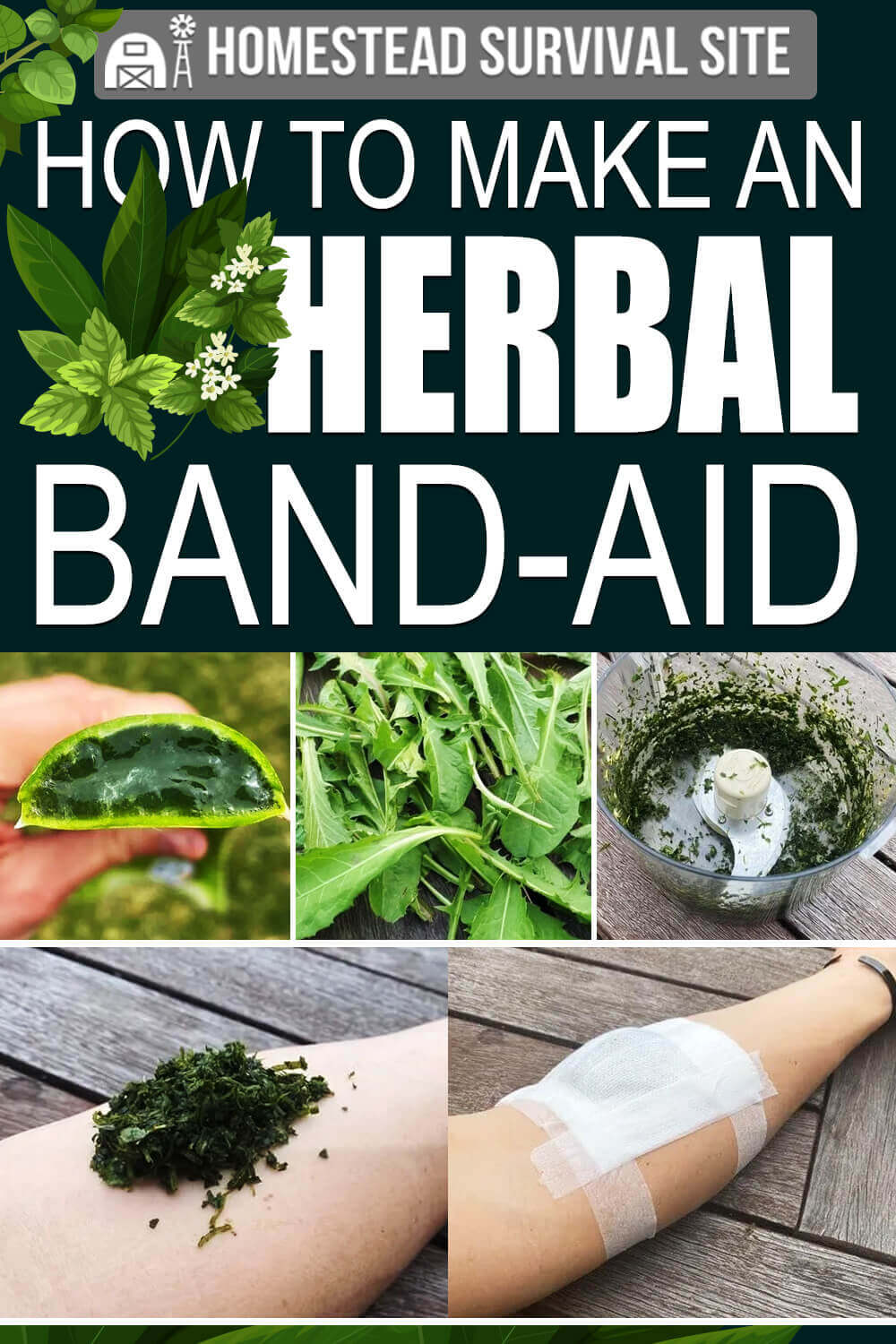 How To Make An Herbal Band-Aid
