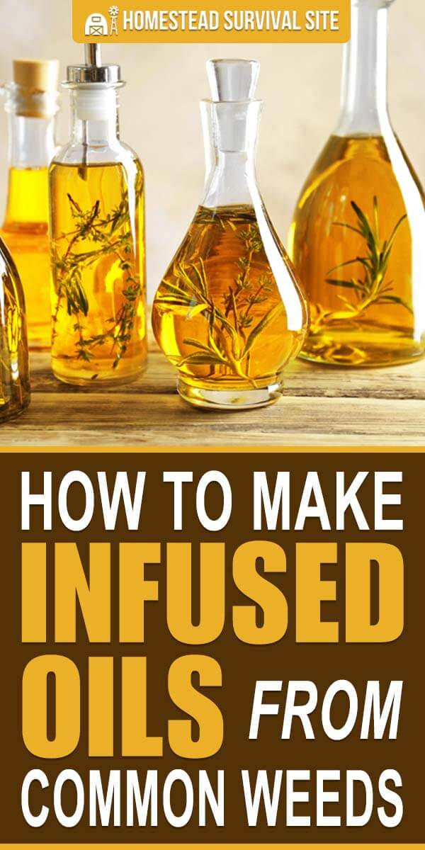 How to Make Infused Oils From Common Weeds