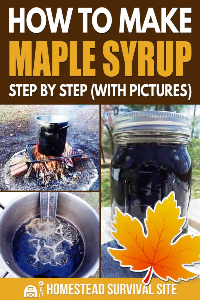 How To Make Maple Syrup Step by Step (With Pictures)