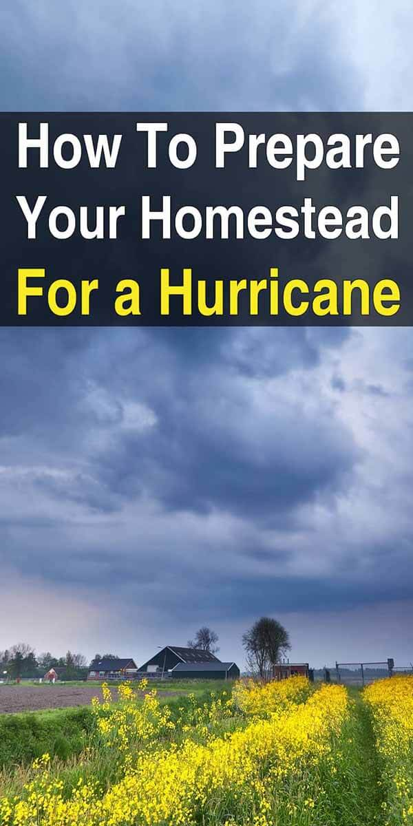 How to Prepare Your Homestead for a Hurricane