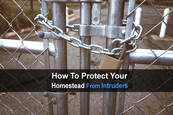 How To Protect Your Homestead From Intruders