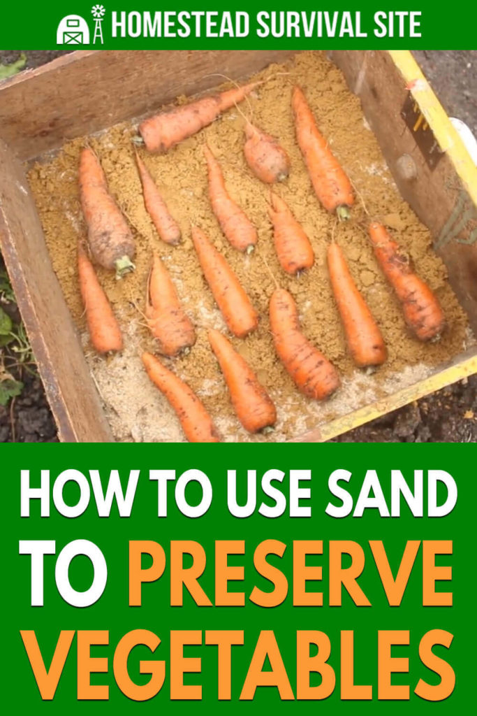 How To Use Sand To Preserve Vegetables