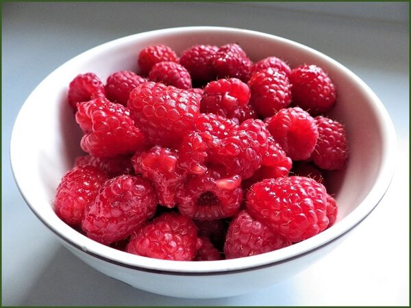 Hybrid Red Raspberries