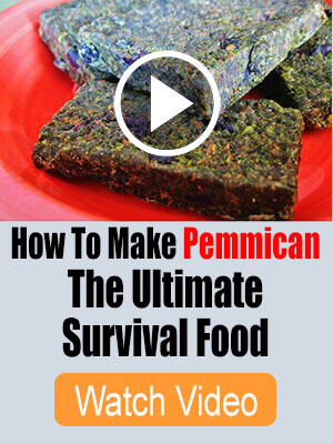 Lost Ways Pemmican Video