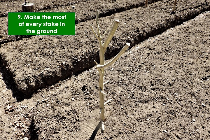 Make The Most Of Every Stake