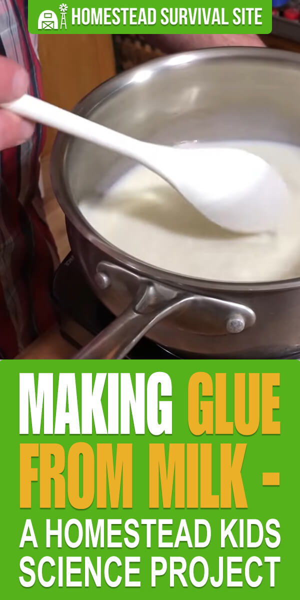 Making Glue From Milk - A Homestead Kids Science Project