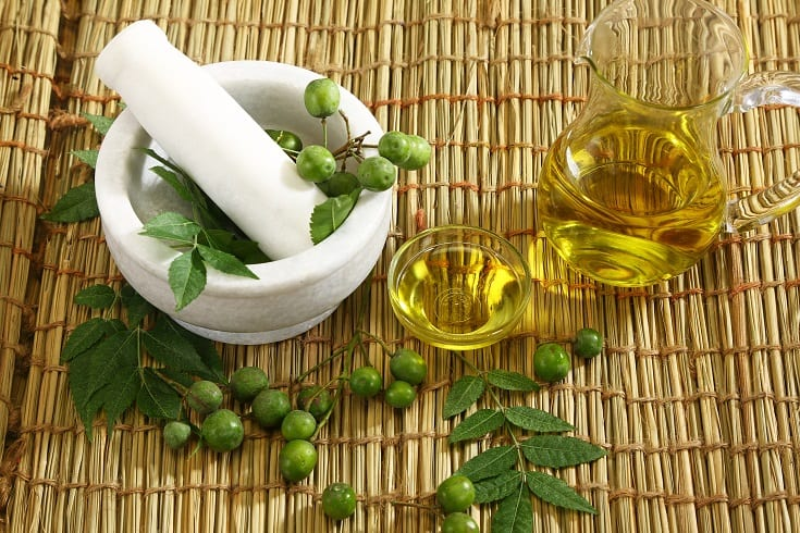 Neem Fruit and Oil