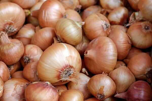 Onions | Foods That Store Well in Root Cellars
