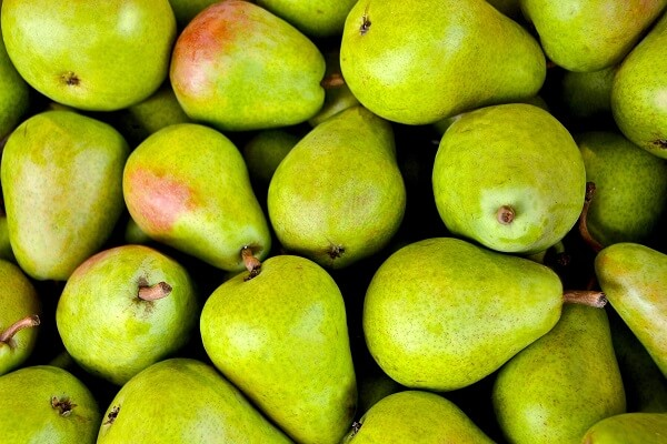 Pears | Foods That Store Well in Root Cellars
