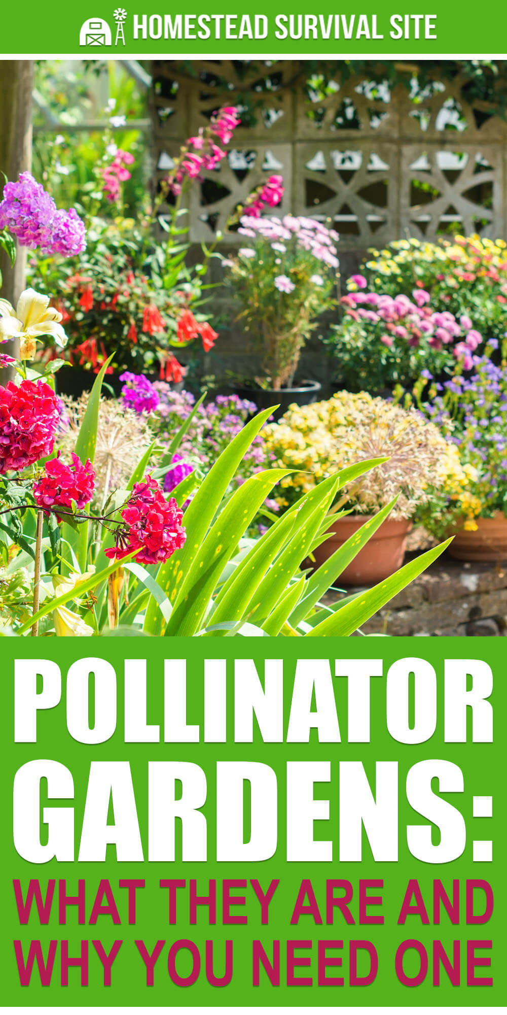 Pollinator Gardens: What They Are and Why You Need One