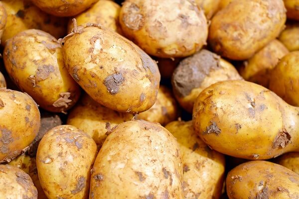 Potatoes | Foods That Store Well in Root Cellars