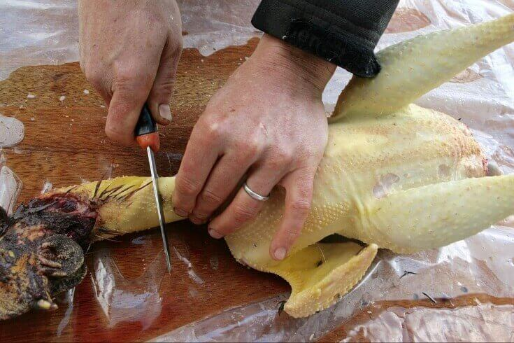 Removing Head From Chicken