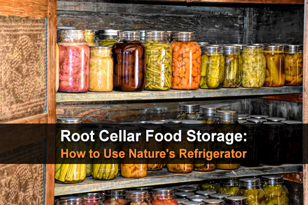 Root Cellar Food Storage: How to Use Nature's Refrigerator
