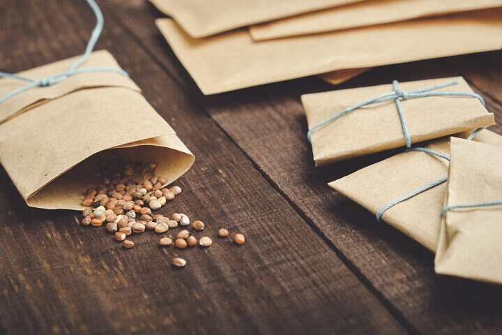 Seeds in Paper Packets