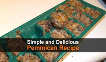 Simple and Delicious Pemmican Recipe