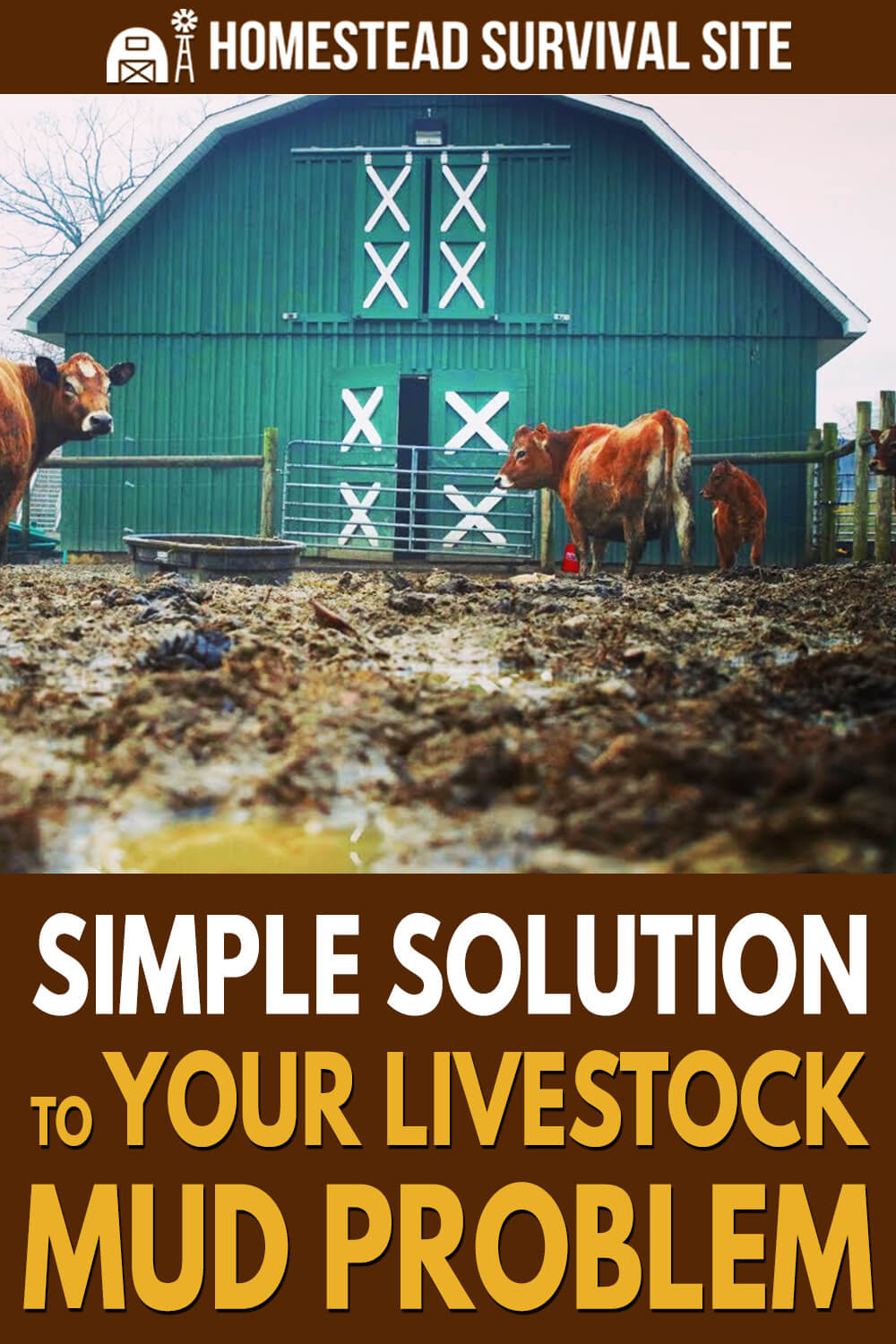 Simple Solution To Your Livestock Mud Problem