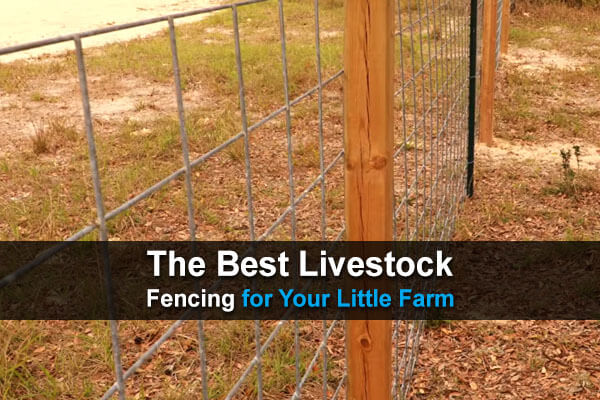 The Best Livestock Fencing For Your Little Farm