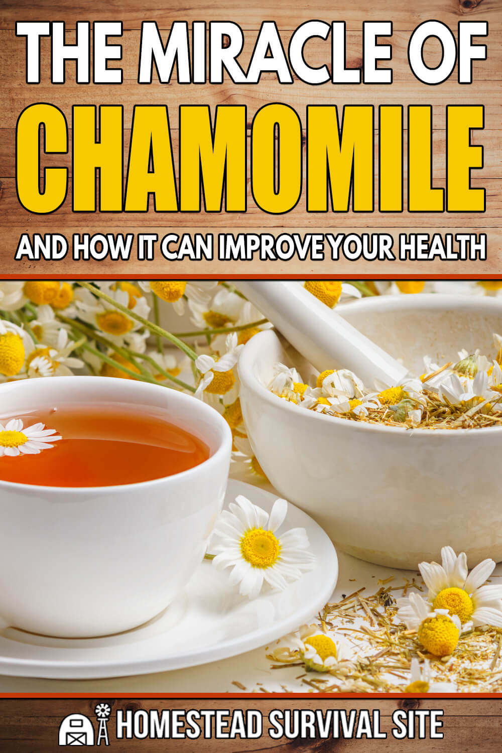 The Miracle of Chamomile and How it Can Improve Your Health