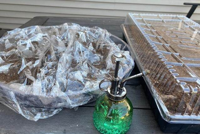 Tray Covered With Plastic Wrap