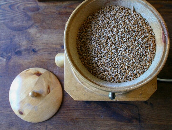 Wheat Berry In Grinder