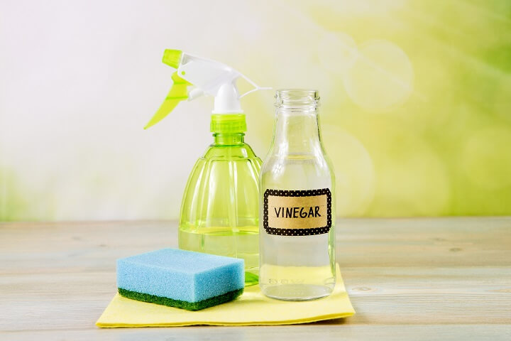 White Vinegar, Sponge, and Spray Bottle