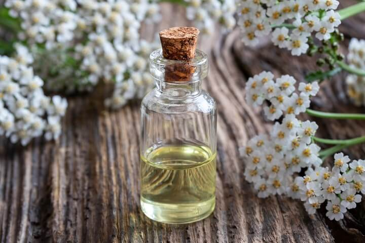 Yarrow Essential Oils and Flowers